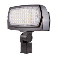 C-Lite LED Flood Light | Narrow Optic