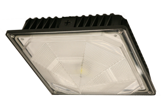 E-CSA07 series Canopy Lights